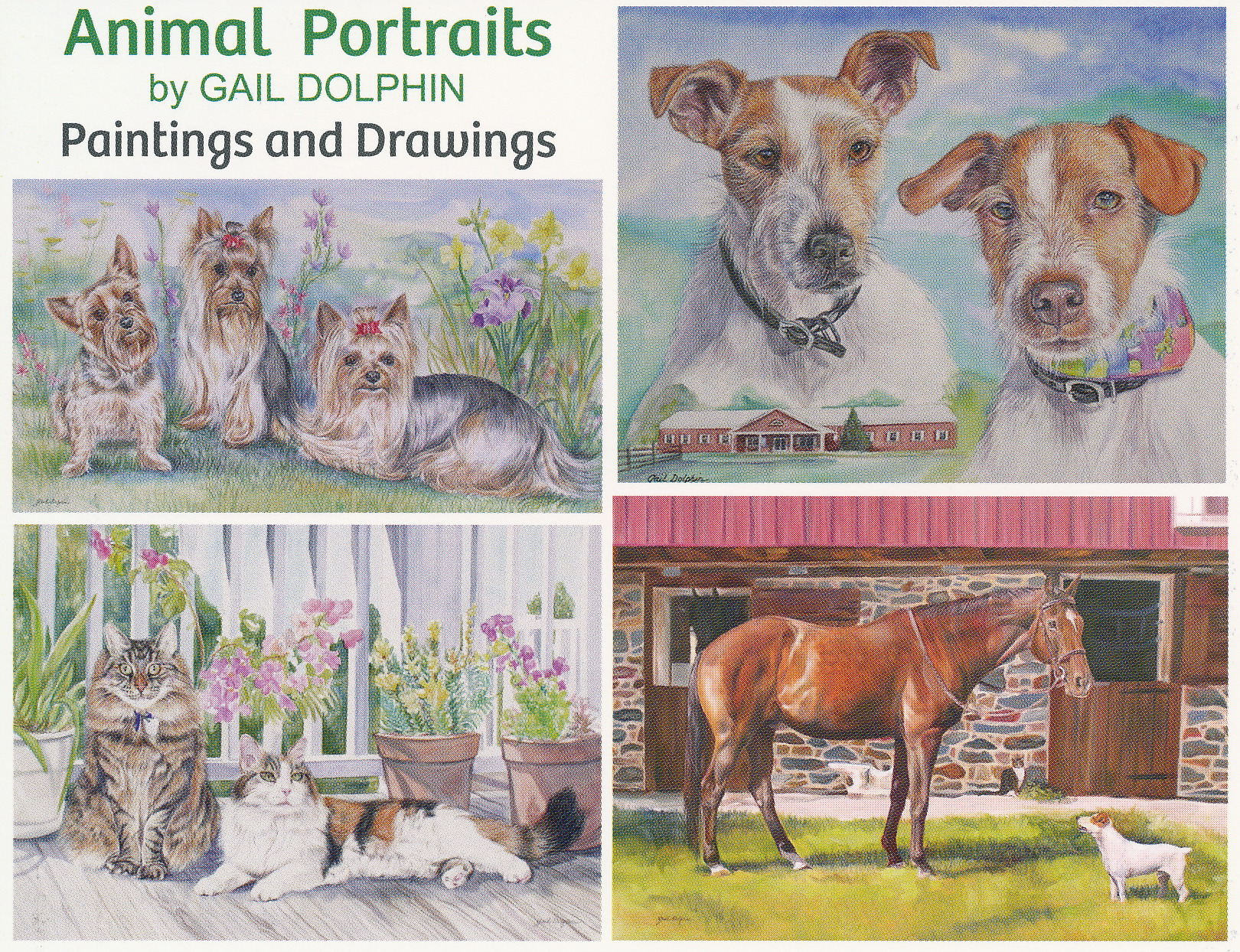 Pet Portraits by Gail Dolphin