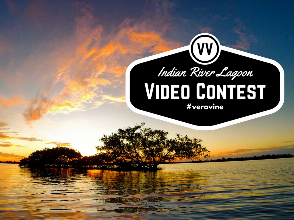 Indian River Lagoon Video Contest